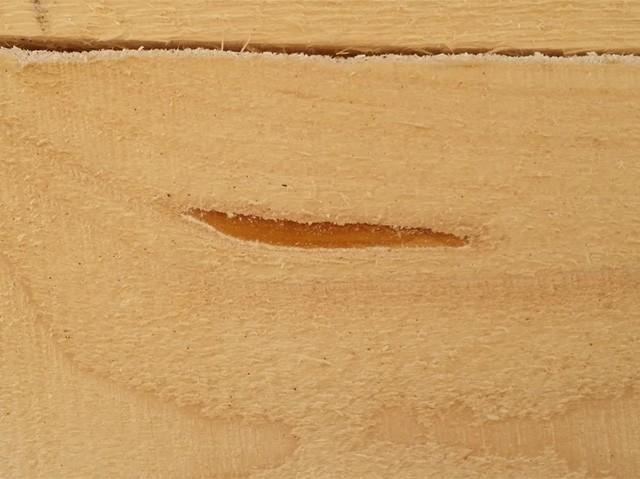 дефект древесины